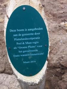 Boomplant Voort 6